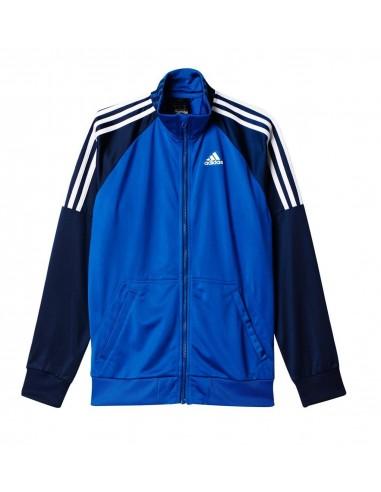 Tuta Adidas TS Riberio